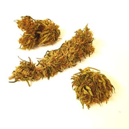 Kompolti - CBD Buds