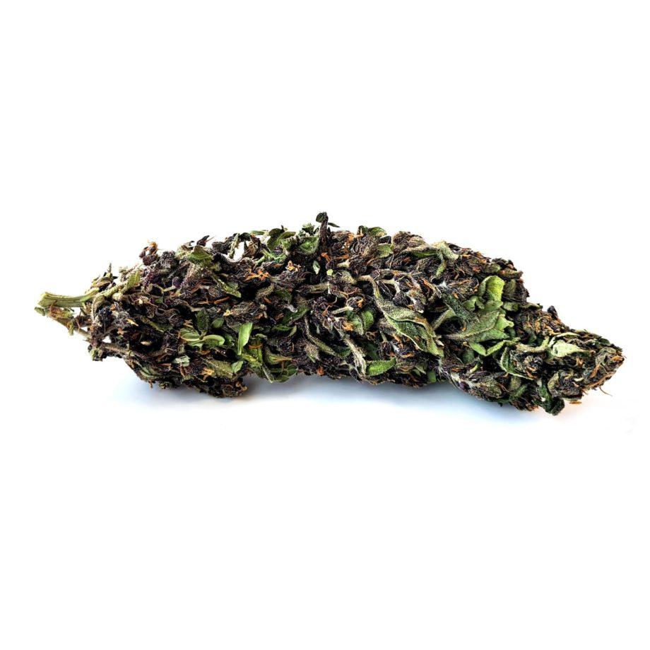 Deep Purple CBD Bud